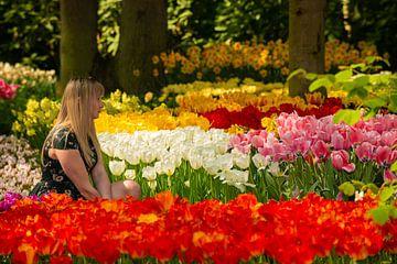 Tulipes au Keukenhof sur Brian Morgan