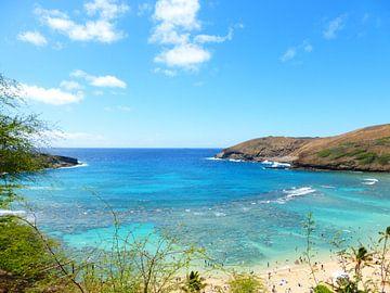 Hanauma Bay Hawaii van Janina Ballali