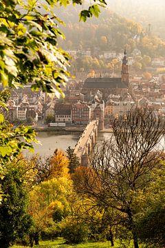 Heidelberg in de Duitse deelstaat Baden-Württemberg, aan de rivier de Neckar van Sjoerd van der Wal
