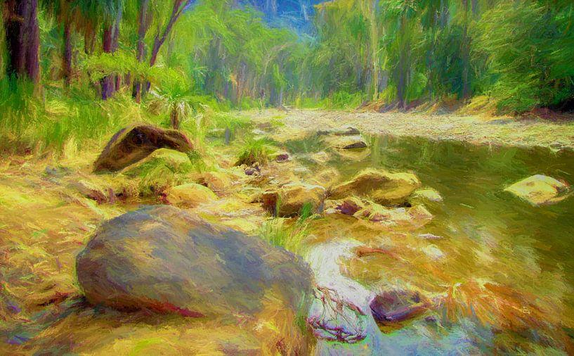 Rivier in Carnarvon Nationaal Park, Australie van Rietje Bulthuis