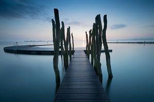 Steiger bij Zeewolde