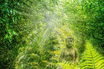 boeddha in weelderig bamboebos van Dörte Stiller