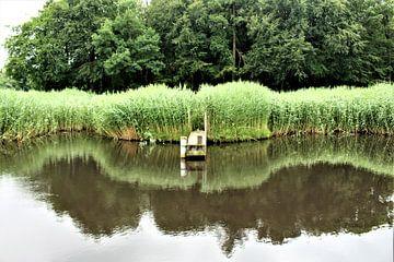 Aan de waterkant. von Janny Bouland