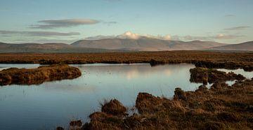 Irish Bogs von Bo Scheeringa Photography