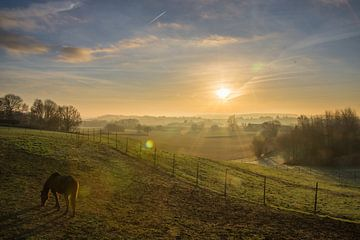 Halten Sie Ihre Pferde - Sonnenaufgang Felder Leefdaal von Manuel Declerck