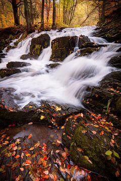 Selke Wasserfall im Herbst von Martin Wasilewski