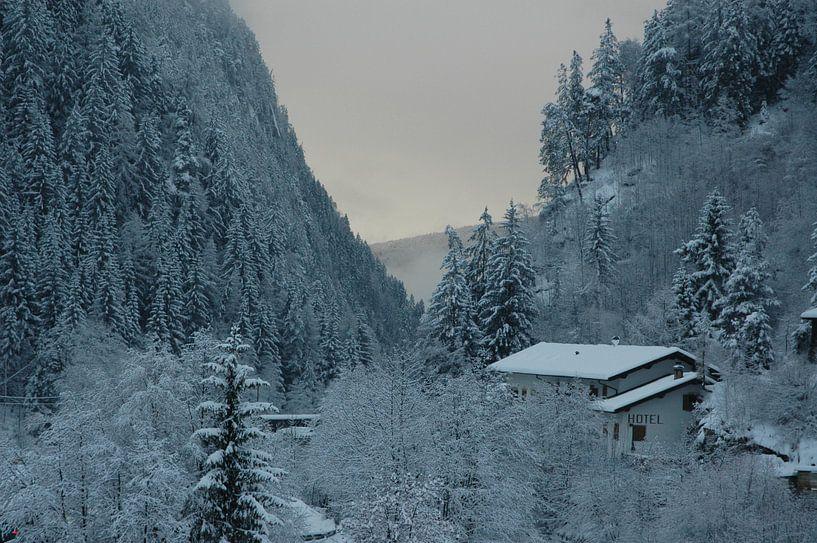 Winter in de Dolomieten van Barbara Koppe
