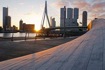Berijpt kunstwerk twist & shout bij Erasmusbrug Rotterdam