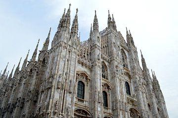 Kathedraal van Milaan van Nicole de Leest