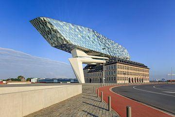 Antwerpen Havenhuis tegen de blauwe hemel met rode fietsstrook van Tony Vingerhoets