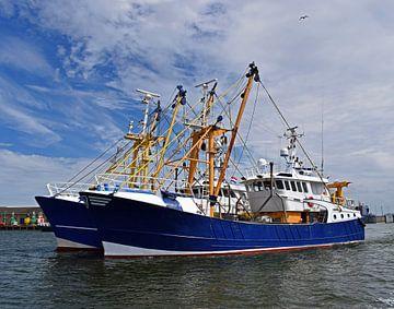 Navires de pêche bleus sur Judith Cool