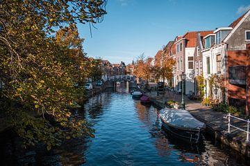 Leiden's lente sur Iris Zoutendijk