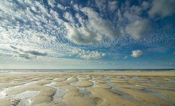 Eb op Nationaal Park Duinen van Texel van Pieter Heres