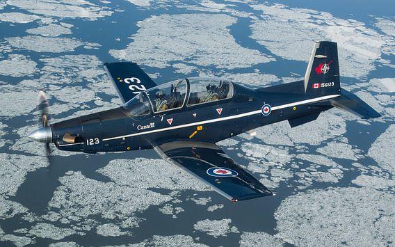 Koninklijke Canadese Luchtmacht CT-156 Harvard II