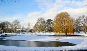 Winter in Leiden van
