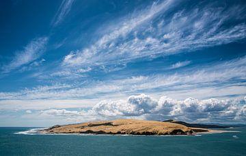 Uitzicht van Arai-Te-Uru wandelroute von Studio W&W