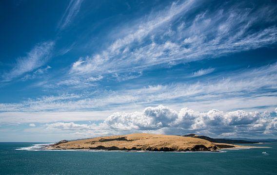 Uitzicht van Arai-Te-Uru wandelroute