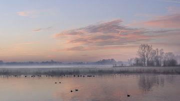 Winterochtend von Mariëlle de Valk