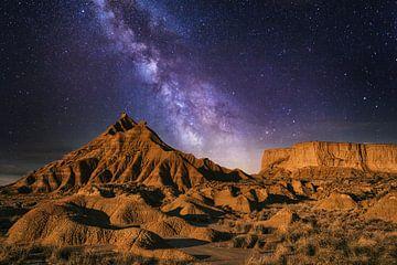 Die Wüste von Navarra von Saskia Dingemans