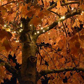 Herfst boom van H,M SOETENS