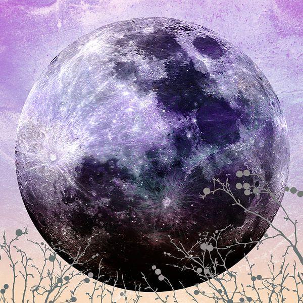 MOON under MAGIC SKY VII-1 van Pia Schneider