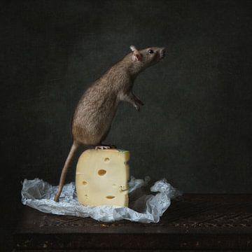 Ratte mit Käse von Carolien van Schie