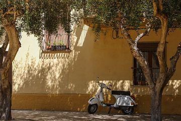 The Italian Way van Chris Moll