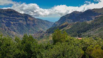Zwei grün bewachsene Bergrücken auf Madeira mit Meer und Wolken im Hintergrund von Hans-Heinrich Runge