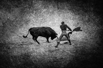 Stierengevecht Torero en Stier in zwart-wit van Dieter Walther