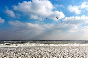 Bevroren IJsselmeer van