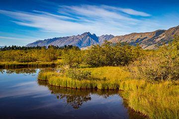 Glenorchy lagune van Antwan Janssen