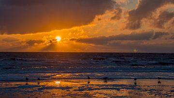 Zonsondergang.  von Frank Van der Werff