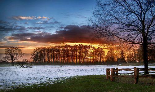Zonsondergang achter de bomen in een winters landschap van