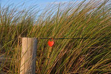 love of Baltic Sea sur Claudia Moeckel