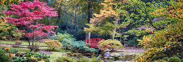 Japanese park sur
