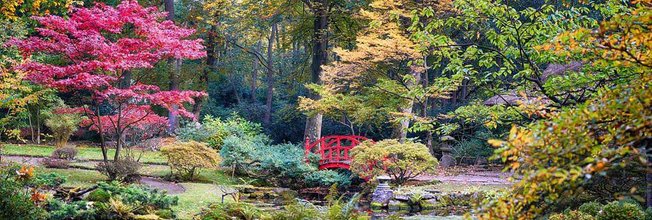 Japans park, Den Haag van Ariadna de Raadt