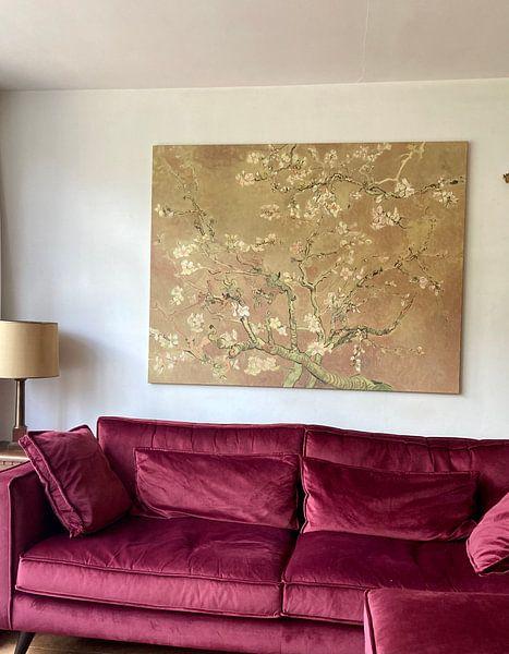 Kundenfoto: Mandelblüte ALMOND BLOSSOM ocker - Vincent van Gogh