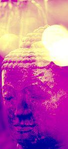 Buddha Kopf Pop Art van