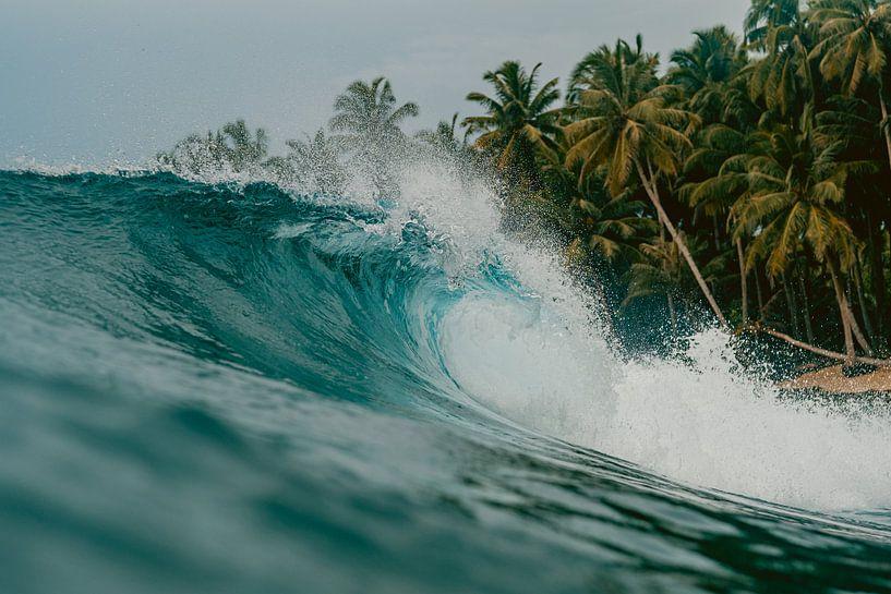 Mentawai vagues 3 sur Andy Troy