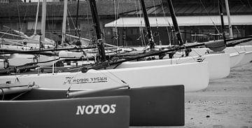 Catamaran  zeilen von Robby Stifter