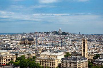 Parijs vanaf de Notre Dame met zicht op Sacré-Coeur van Jan Sportel Photography