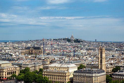 Parijs vanaf de Notre Dame met zicht op Sacré-Coeur