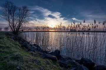 Flussufer von Frank Bison