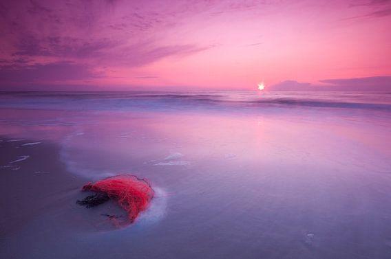 Purple evening at the beach - 1 van Damien Franscoise