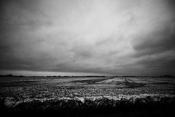 Spooky Meadow von Edgar Lanting