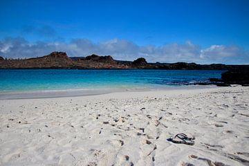 Galapagos strand van Marieke Funke