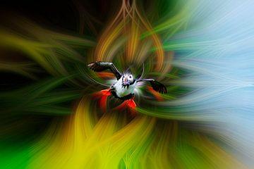 Papegaaiduiker fantasie van Andrew George