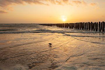 Salzwiesen-Sonnenuntergang von anne droogsma