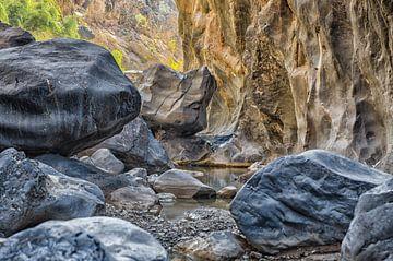 Wadi in Little Snake Canyon, Oman van Karin Mooren