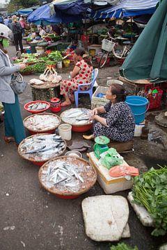 Vis verkopen op een markt in Vietnam van t.ART